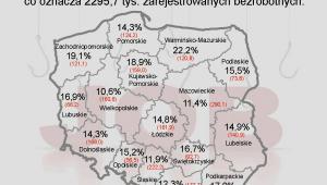 Bezrobocie w Polsce w styczniu 2013 r. - mapa z podziałem na województwa