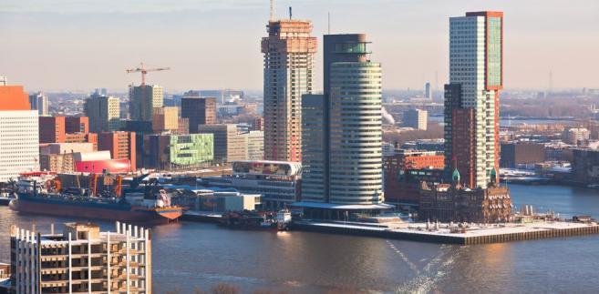Widok na Rotterdam z wieży Euromast