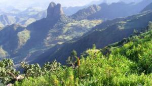 Krajobraz Etiopii.