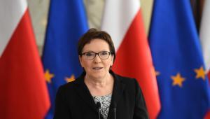 Premier Ewa Kopacz, PAP/Radek Pietruszka