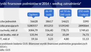 Wyniki finansowe podmiotów w Polsce w 2014 roku według zatrudnienia Infografika Zbigniew Makowski
