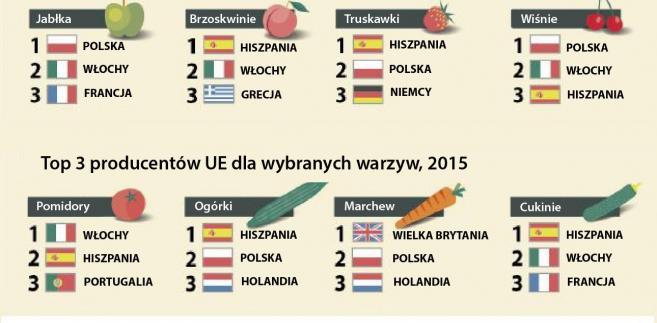 TOP3 producentów warzyw i owoców w UE