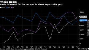 Eksport pszenicy z Rosji, USA oraz UE