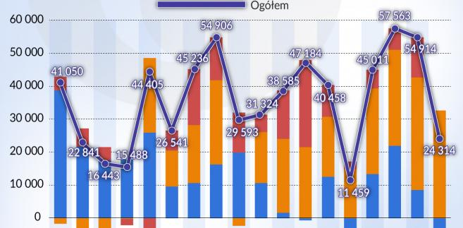 BIZ w Polsce lata 2000-2017 (graf. Obserwator Finansowy)