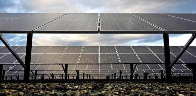 Panele w elektrowni słonecznej w Kalifornii